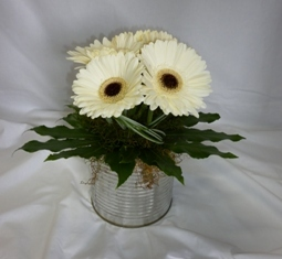 CAN-OF-GERBERAS